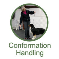 Conformation Handling Classes