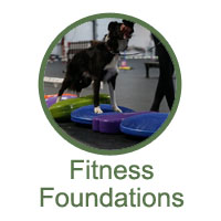 Fitness Foundations Classes