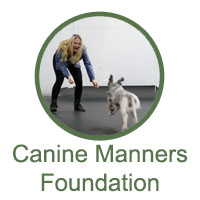 Canine Manners Foundation - Levels 1 and 2