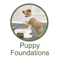Puppy Foundation Classes