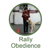 Rally Obedience Classes